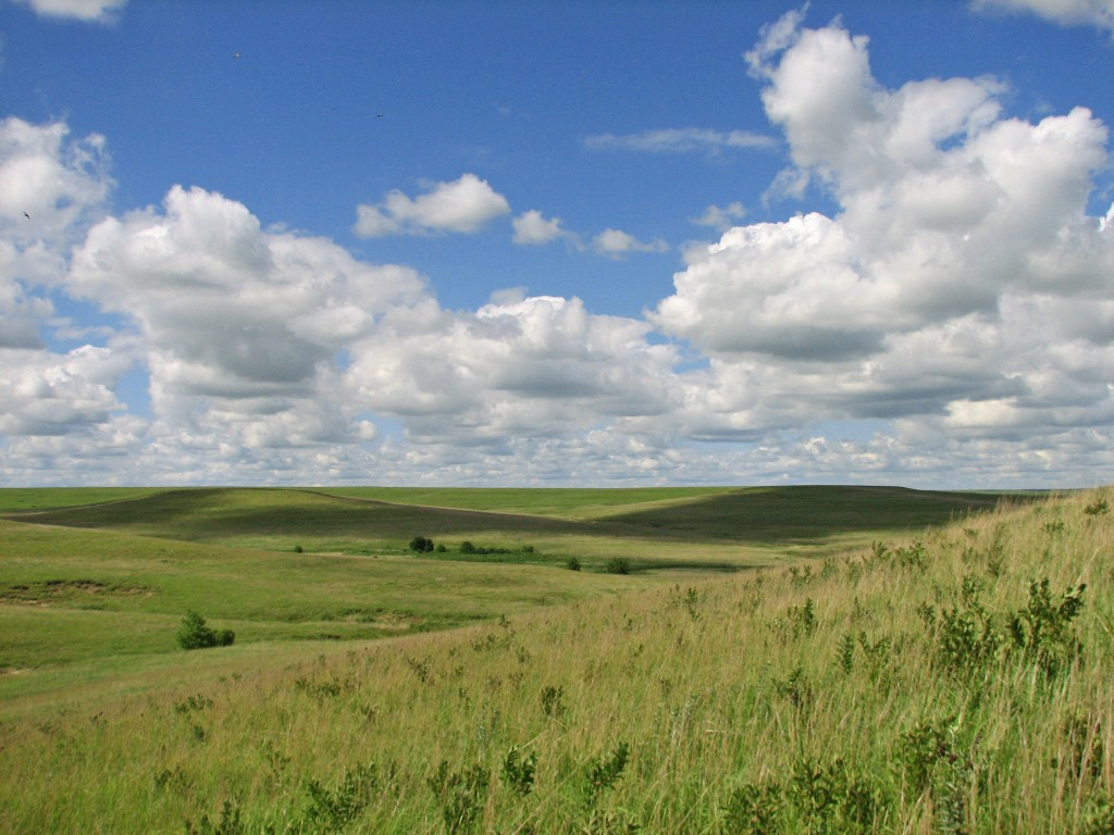 Tallgrass Prairie National Preserve. Photo by Brad Guhr.