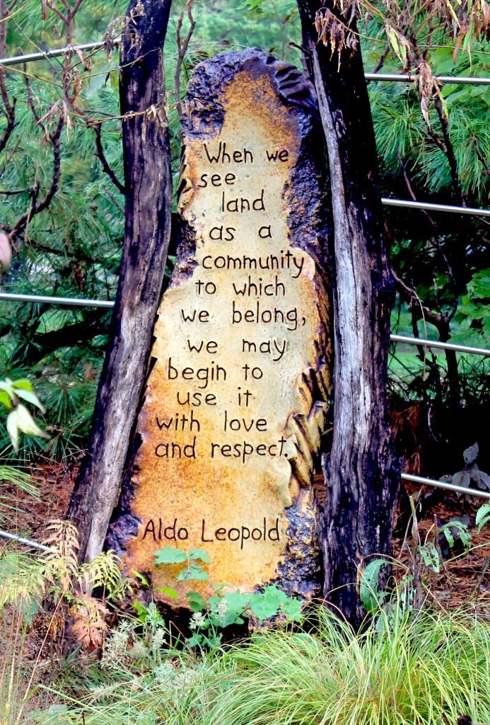Leopold quote