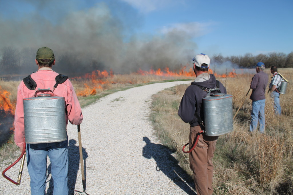 Prescribed burn in March 2015 at Dyck Arboretum