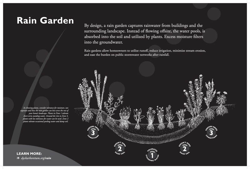 Rain Garden - Dyck Arboretum on rain illustration, rain barrels, bioswale design, rain gardens 101, rain art drawings, rain gutter downspout design, rain roses, gasification design, rain harvesting system design, french drain design, dry well design, rain water design, rain construction,