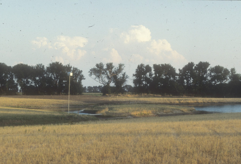 The Dyck Arboretum pond in 1984