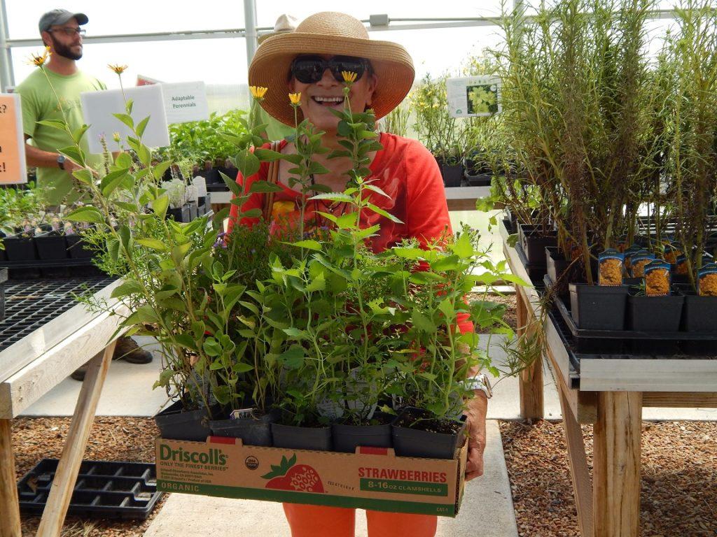 FloraKansas Fall Native Plant Festival: Member Day