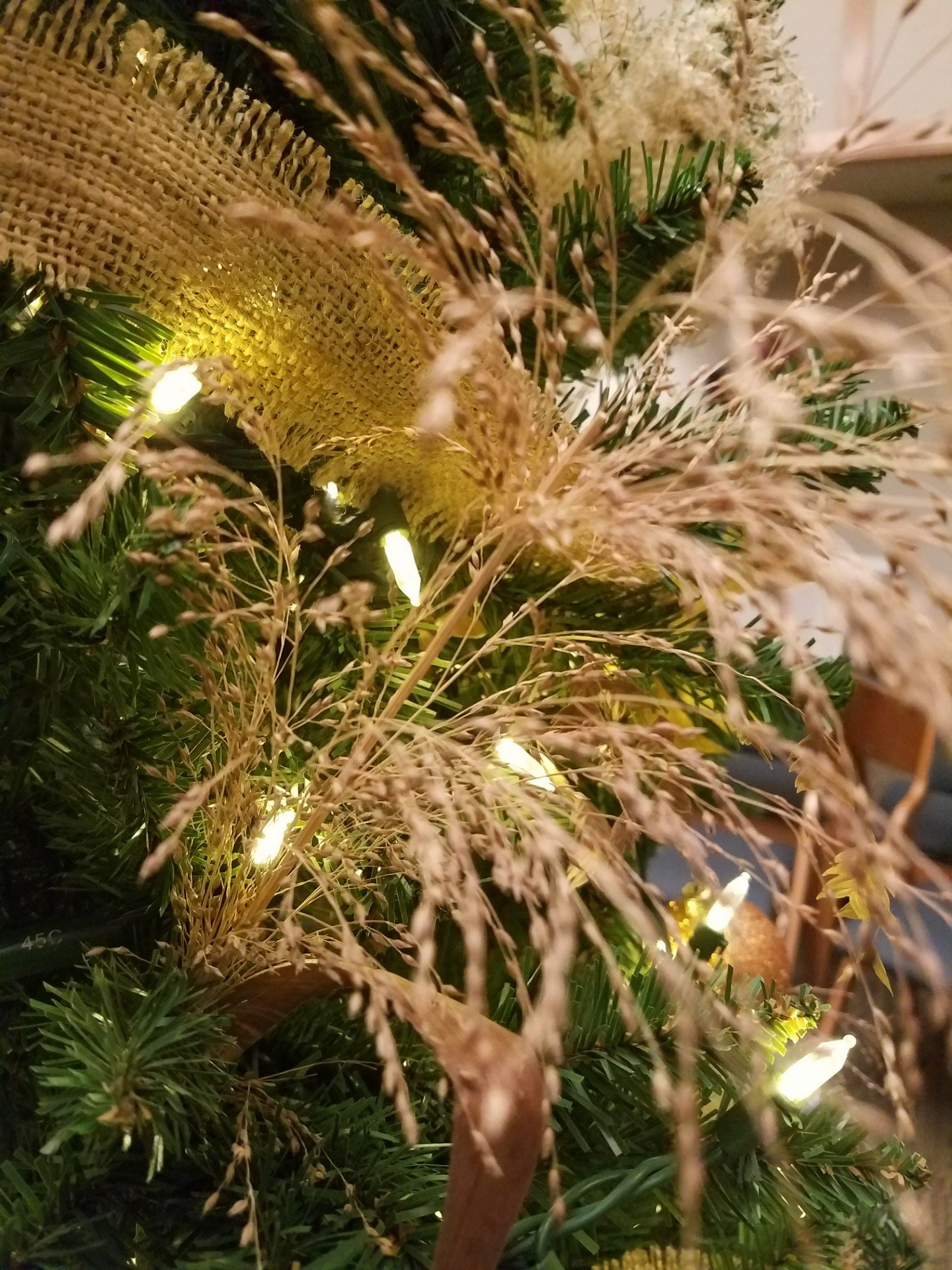 Any Christmas Tree, Cedar Or Artificial, Can Benefit From Some Ecologically  Conscious Decorations. Dried Grass And Seed Heads Of Prairie Plants Look  Magical ...