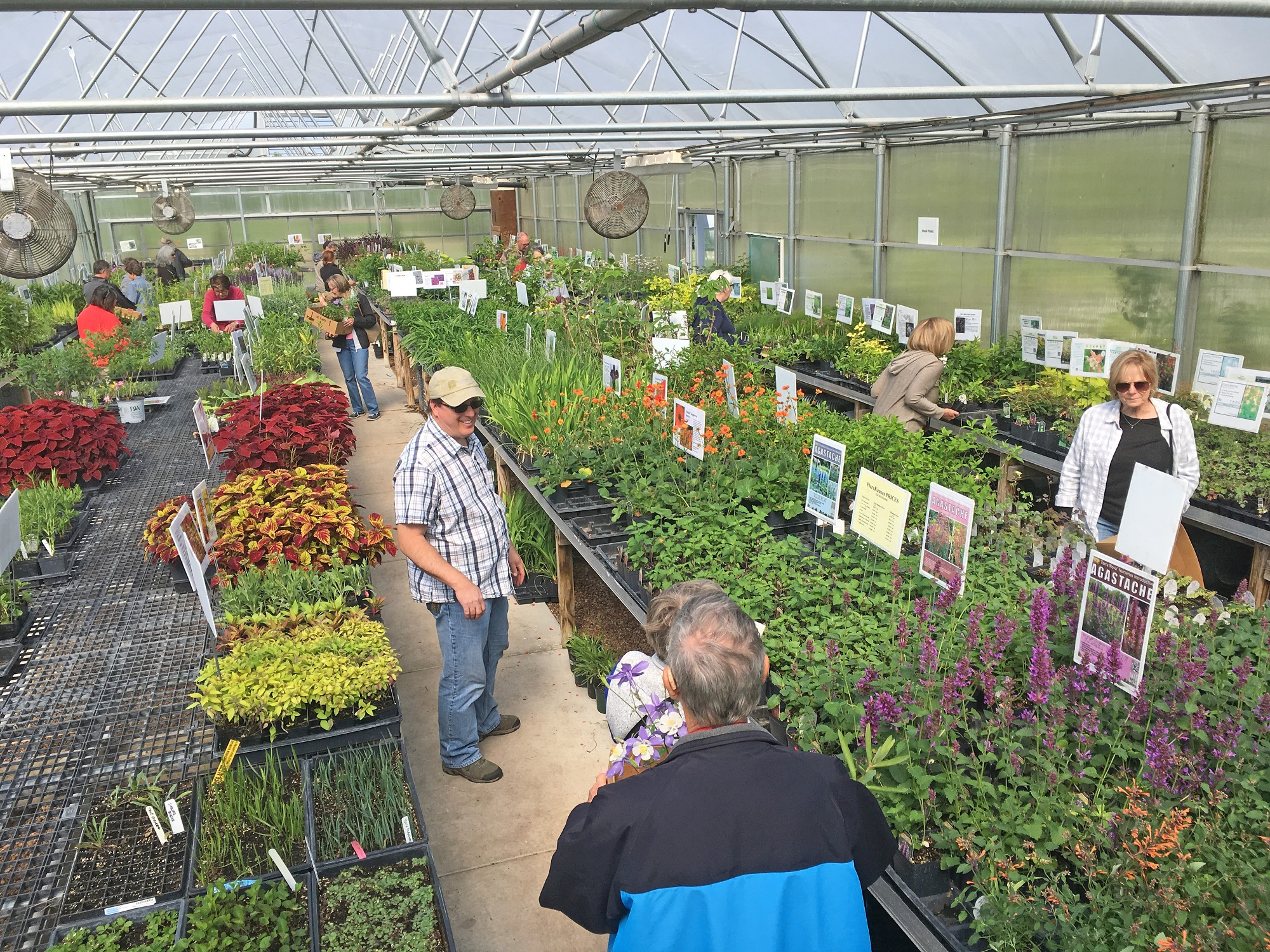 FloraKansas Spring Native Plant Sale