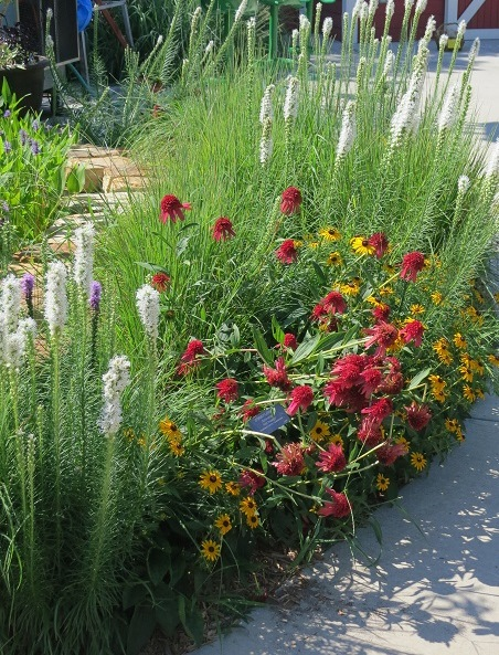 Can Such A Small Garden Mimic Essential Ecological Processes? Will These  Pocket Gardens Connect People With Nature? Even If Only Some Of This Is  True, ...