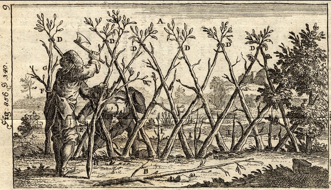 Superieur Dyck Arboretum