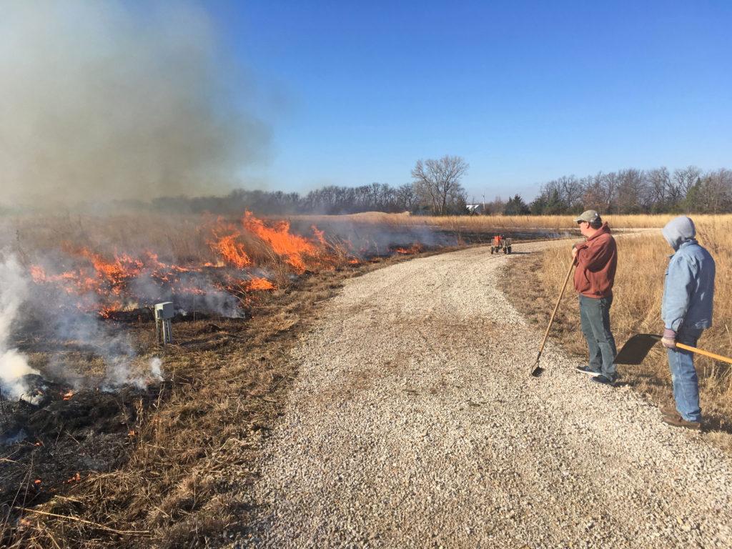 Crows Picking Over Prairie Burn On >> Brad Guhr Author At Dyck Arboretum